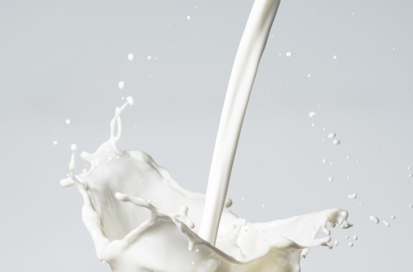 The Post-Milk Generation: Ditching the Dairy Once and for All
